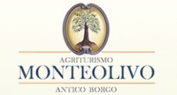 MonteOlivo